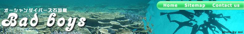 石垣島でダイビングするなら、オーシャンダイバーズ石垣島 BadBoys